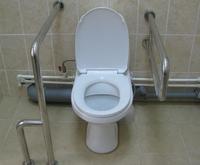 Поручни в туалет